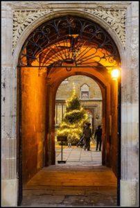 christmas-tree-oxford